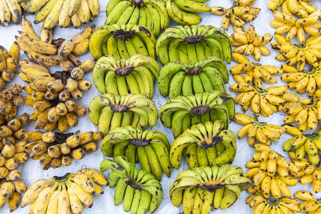 Bananas on display at a morning market in Luang Prabang, Laos