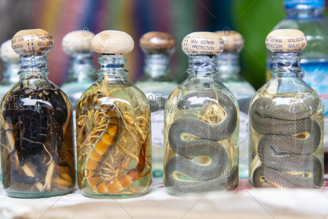 Snakes and scorpions preserved in jars for sale in Luang Prabang, Laos