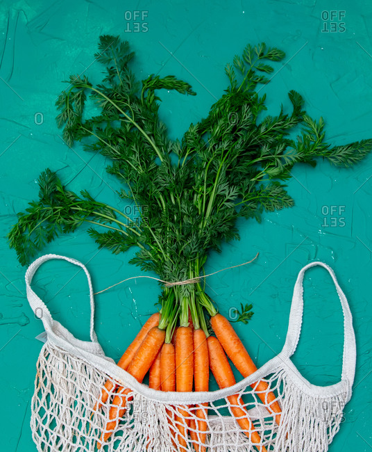 Fresh carrots with roots in net bag on green background
