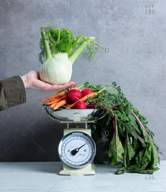 Female hand hold fennel near vintage scale with vegetables