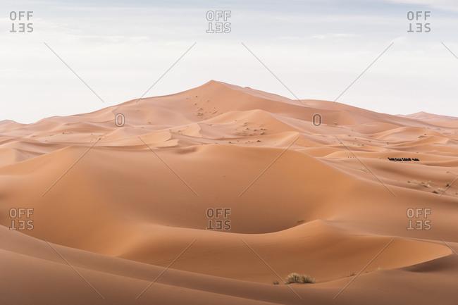 Dunes of Merzouga desert- Morocco