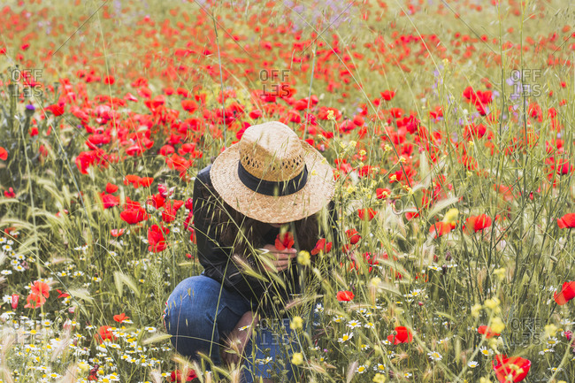 Young woman crouching in poppy field
