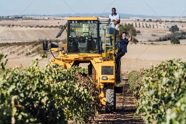 Grape harvesting machine and young winegrowers during grape harvest- Cuenca- Spain