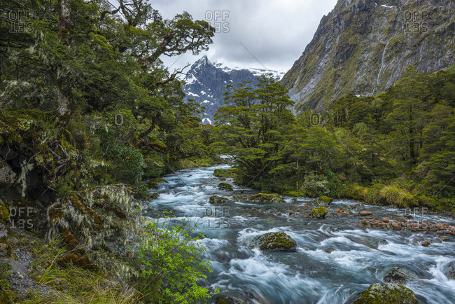 New Zealand- Southland- Te Anau- Long exposure of Hollyford River