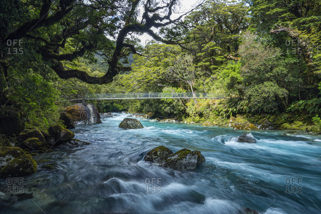New Zealand- Southland- Te Anau- Bridge across Hollyford River flowing in Fiordland National Park