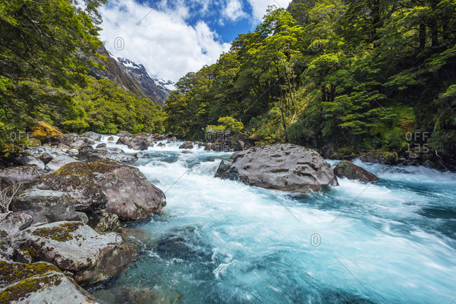 New Zealand- Southland- Te Anau- Long exposure of Hollyford River rushing in Fiordland National Park