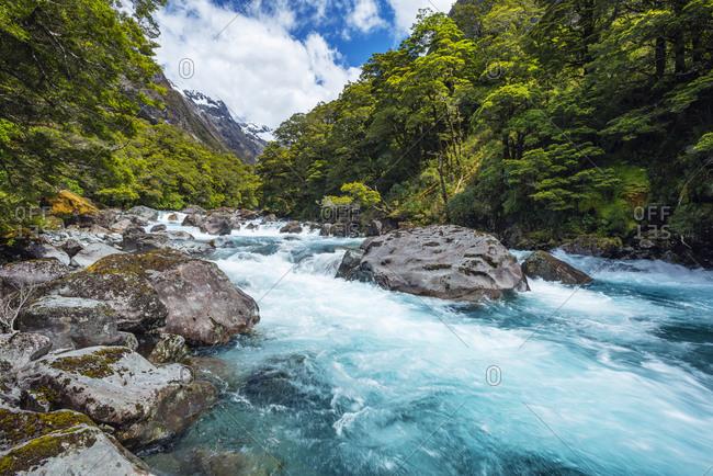 New Zealand- Southland- Te Anau- Long exposure of Hollyford Riverrushing inFiordlandNational Park