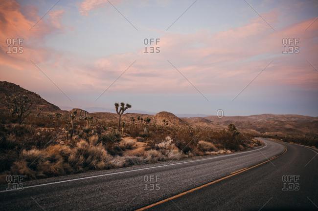 Windy road around Mojave desert of Joshua Tree National Park at sunset