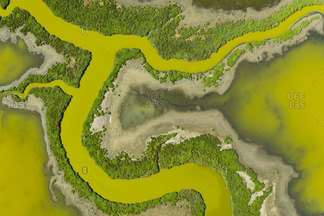 Aerial of Strange Waterways in SF Bay Marshland