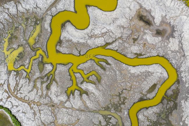 Aerial of Strange Green Waterways in SF Bay Marshland