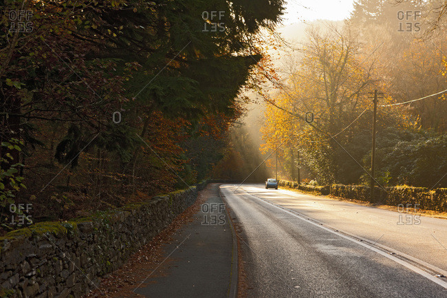 Road in North Wales in the early morning