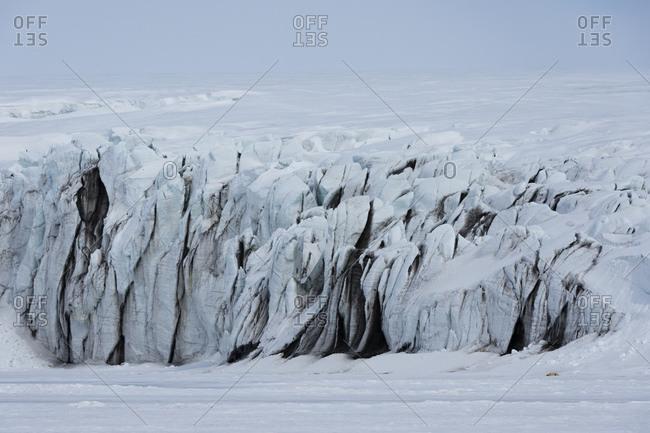 Polar bear resting in vast glacier landscape, distant view, Barents Island, Svalbard, Norway