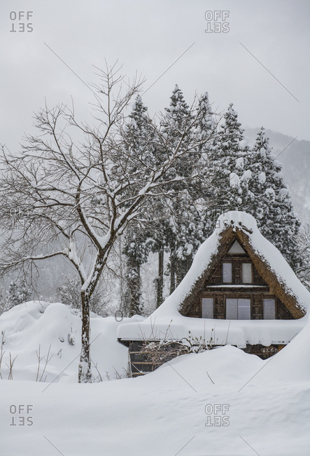 Snow covered wooden building in winter, Shirakawa village, Takayama, Gifu, Japan