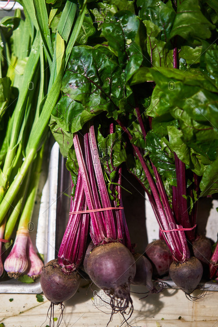 Beets at a grocery store