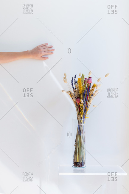 Interior design and minimal florist concept. Composition with white copy space. Isolated crystal vase with dry flower bouquet.