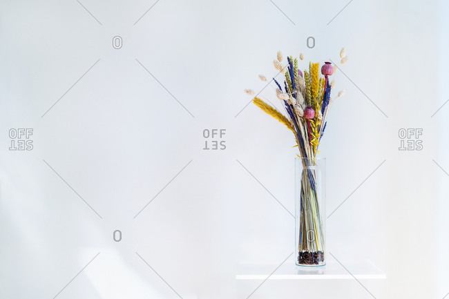 Conceptual interior design and minimal florist concept. Composition with white copy space.