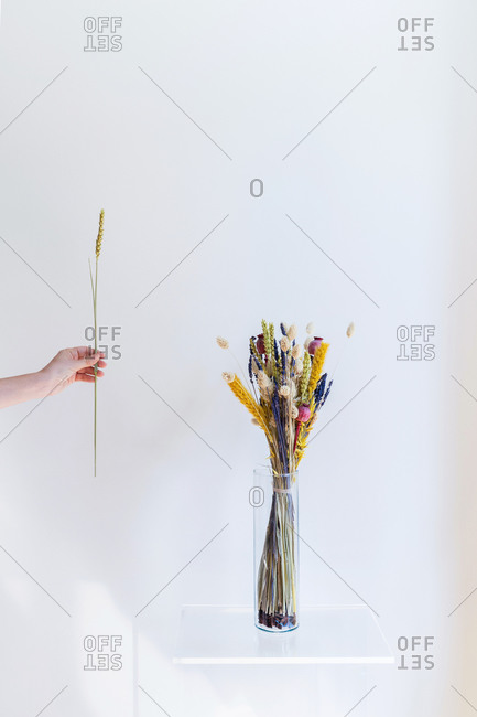 Conceptual interior design and minimal florist concept. Dry bouquet composition with white copy space. Wedding decoration concept.