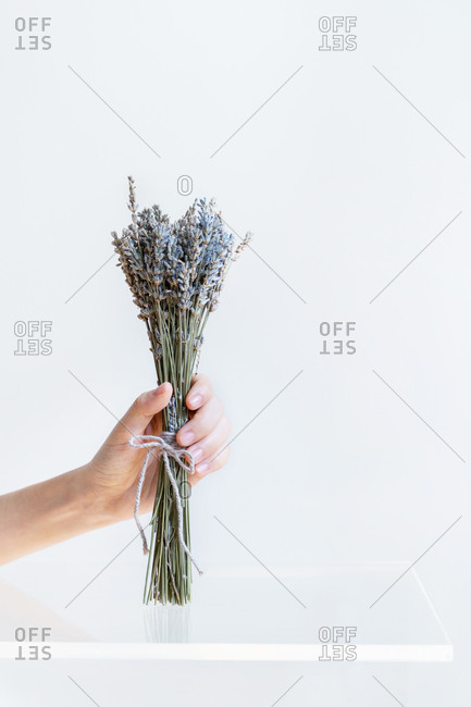 Conceptual interior design and minimal florist concept. Flower composition with white copy space. Bride and wedding and decoration concept.