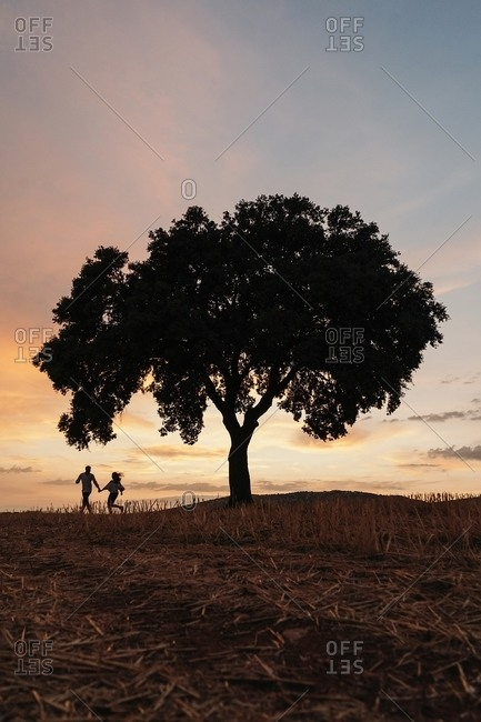 Silhouettes of unrecognizable man and woman holding hands and standing under tree against cloudy sundown sky during romantic date in nature