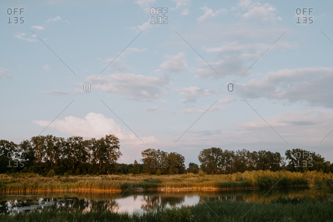 Picturesque scenery of calm lake with green grass and trees reflected in water under blue cloudy sky in summer evening in countryside