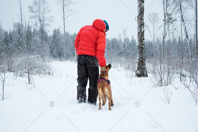 Back view of male in black and red outerwear scratching head of dog while walking on white snow near forest on cold winter day in nature