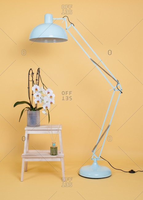 Modern white floor lamp placed near wooden stool with potted flowers against yellow wall in studio