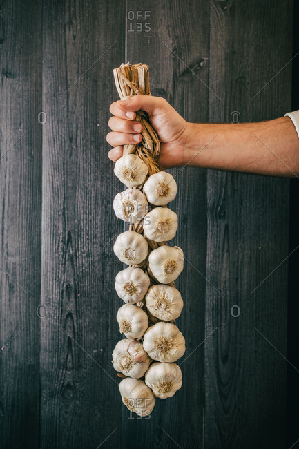 Unrecognizable person holding and showing a bunch of healthy fresh garlic against black lumber wall