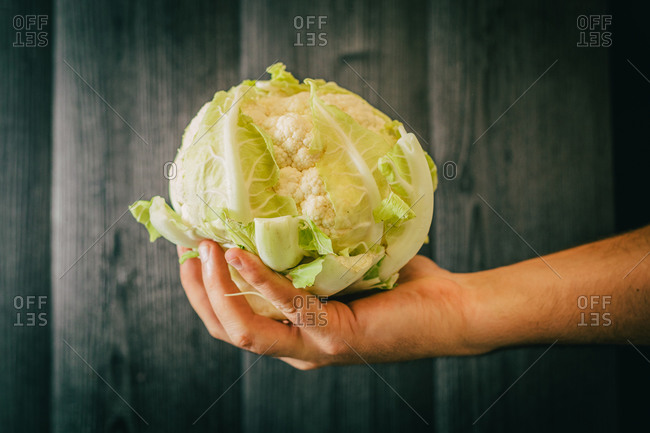 Unrecognizable person holding leaves and showing a bunch of healthy cauliflower against black lumber wall