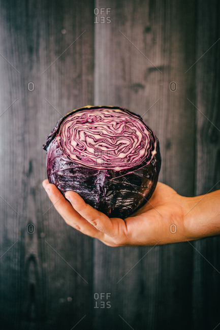 Unrecognizable person grasping and showing healthy fresh red cabbage against black lumber wall while being on diet