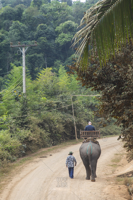 Man riding an Asian elephant near Luang Prabang, Laos