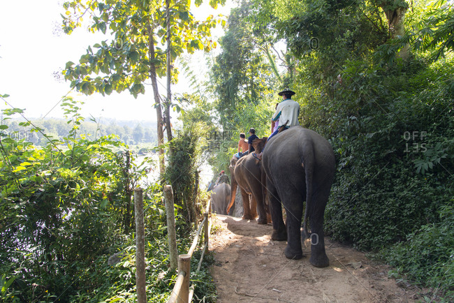 Tourists on elephants in Laos
