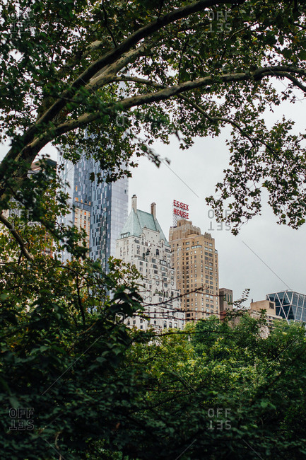 New York City, New York - August 14, 2014: View through trees of buildings and hotels in NYC