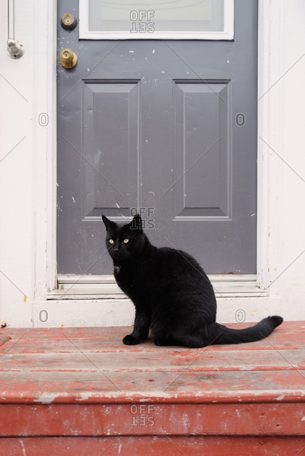Black cat sitting on doorstep