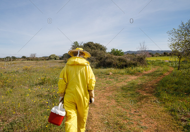 Back view of unrecognizable beekeeper in professional yellow costume carrying plastic container while walking on path in green field in sunny summer day