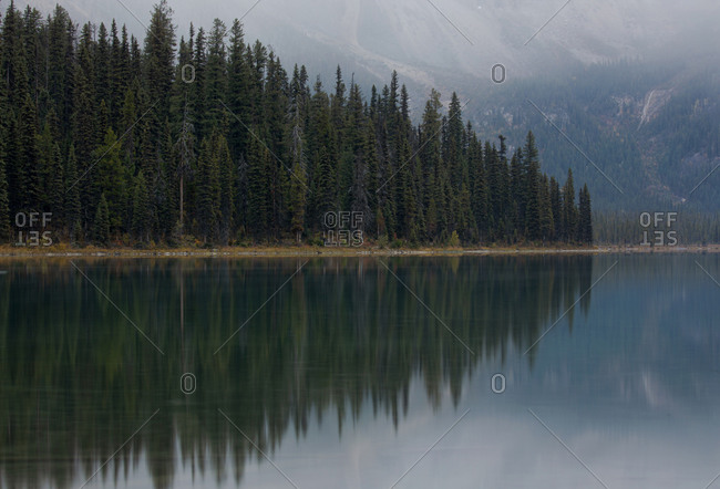 Picturesque scenery with majestic lake with coniferous forest on shore in the countryside