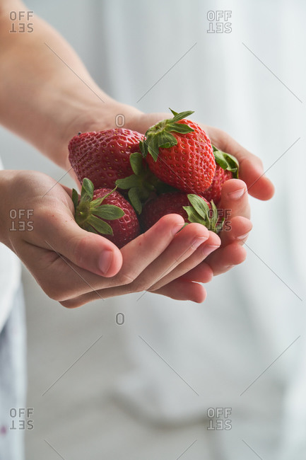 Cropped anonymous kid demonstrating fresh strawberries on his hands on blurred background