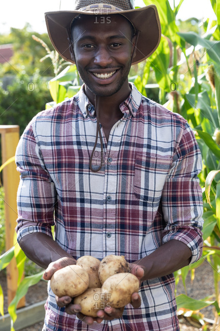 African American man social distancing at home during quarantine lockdown, standing in a garden, smiling and presenting fresh potatoes.