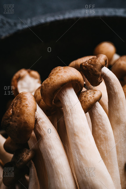 Detail of fresh mushrooms in black pan