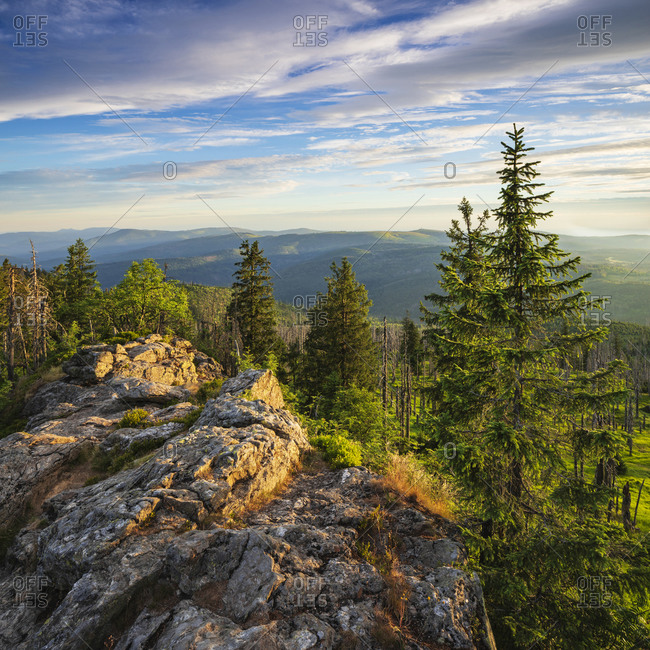 View from the summit of the Great Rachel, morning light, Bavarian Forest National Park, Bavaria, Germany
