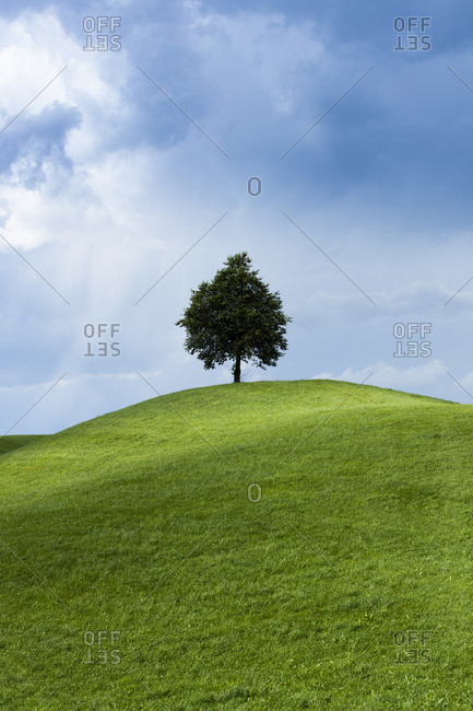 Hilly green landscape in Switzerland