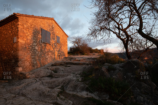 Sunset projecting shades of dry tree on stone construction