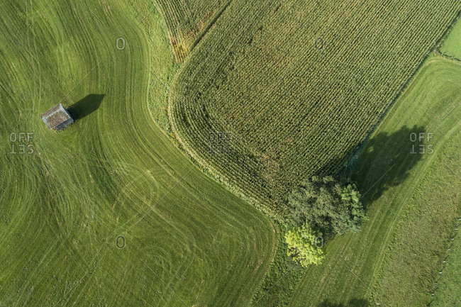 Germany- Bavaria- Drone view of green countryside meadows and cornfield in summer
