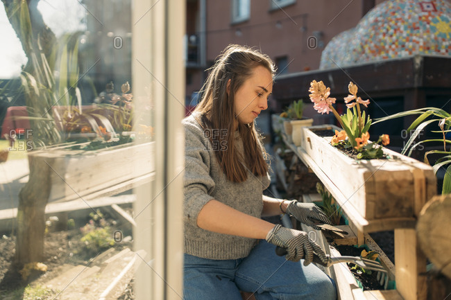 Young woman working in garden in sunshine