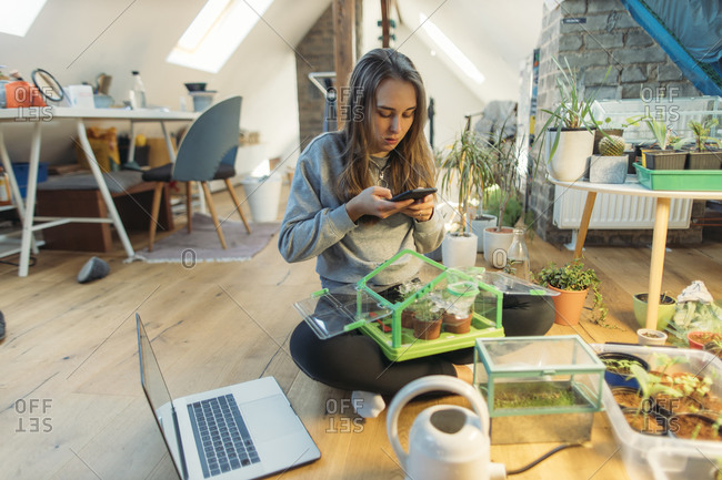Young woman taking smartphone picture of plants on wooden floor