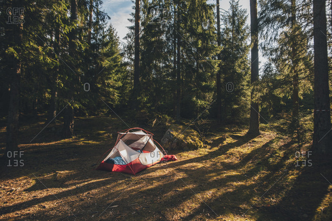 Tent in the woods- with a person sleeping inside in a sleeping bag