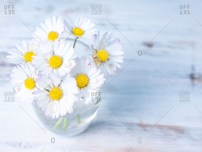 Small bunch of daisies on a vase from above, on a wooden table
