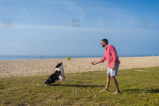 Bearded man playing with dog at beach in sunny day