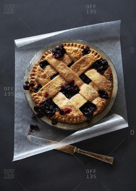 Fresh Baked Warm Blueberry Pie