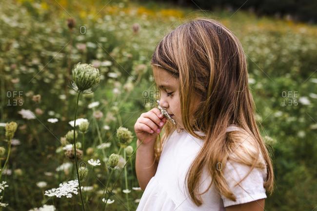 Girl Smelling Flowers in Field