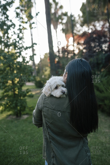 Poodle dog leaning on the shoulder of long-haired teen girl